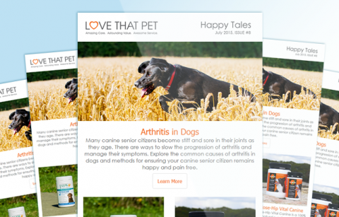 Love That Pet – MailChimp Template