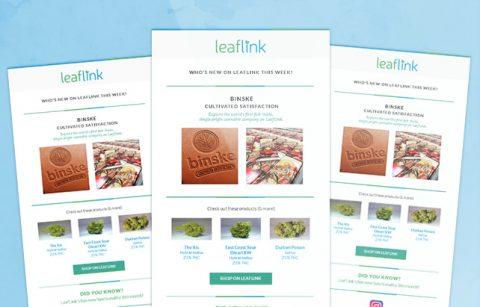 Leaflink eStore Newsletter – MailChimp Template