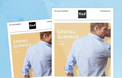 MailChimp Template – Kauf